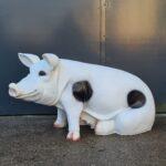 Beeld-van-een-groot-varken-die-zit-in-de-wei-scaled